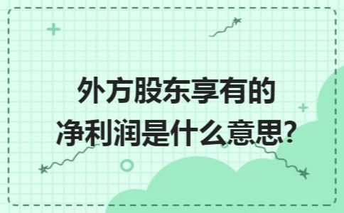 外方股东享有的净利润是什么意思?